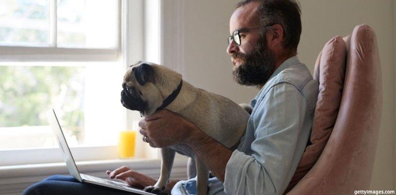 фрилансер с собакой на руках