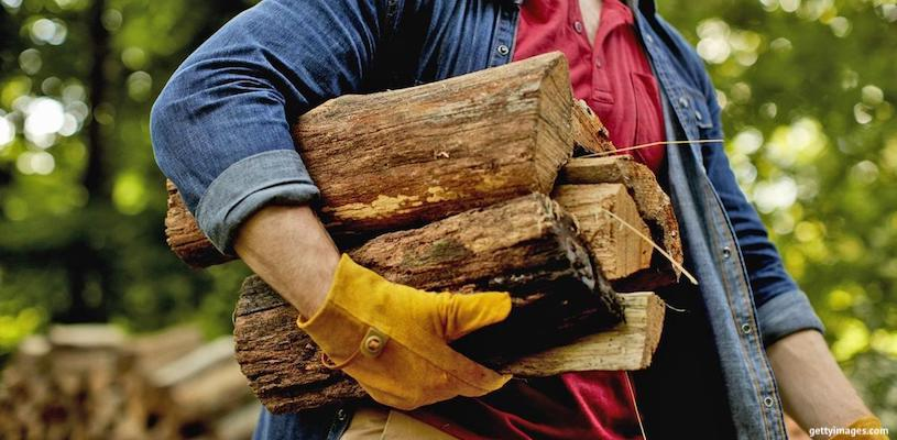 дрова биотопливо