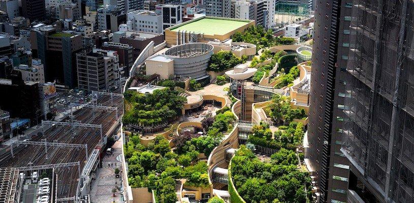 зеленое здание